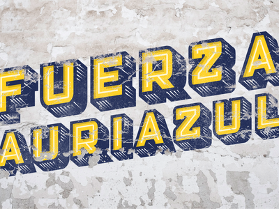 Fuerza Auriazul / Brand Design and Art Direction poster illustration typography logodesign identity logo branding brand identity design brand design