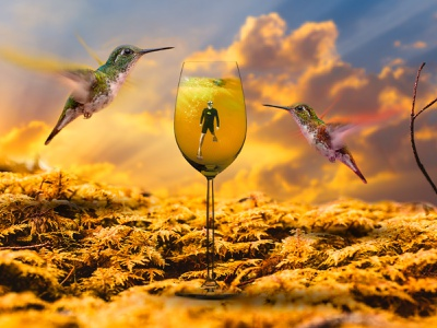 The Man Inside The Glass || Photo Manipulation editing photoshop art photo edit sunshine sunset sky image editing image manipulation photos photograhy photoshop photo editing birds nature manipulate manipulation photograph