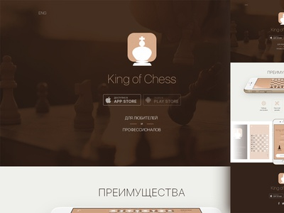 King of Chess game chess