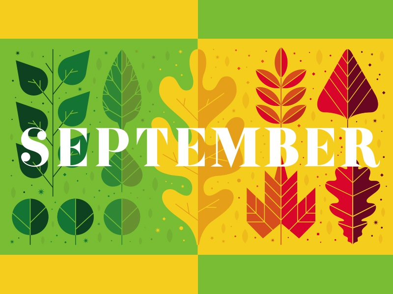 Dallas Child Magazine (Sept. illustration) nature typography ullustration summer fall leaves month calendar september