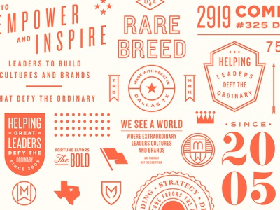 Brand elements script texas seal lockup crest badge logo branding typography pattern
