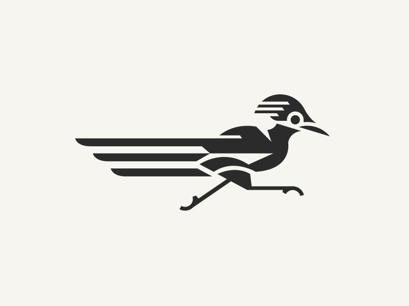 Roadrunner run fast symbol mark branding animal illustration roadrunner logo bird