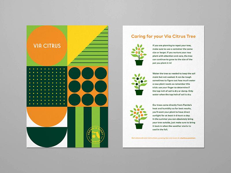 Via Citrus florida badge illustration typography fruit food geometric branding logo card orange plant