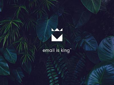 King of the jungle logo design branding start up corporate logo identity tagline king