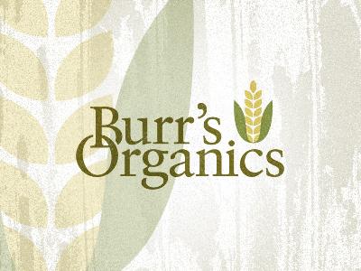 Logo burr 2