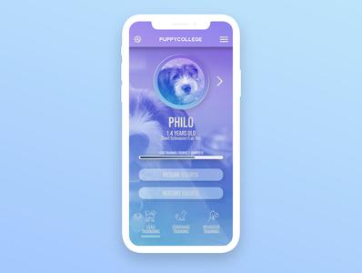 PuppyCollege ux ui mobile design app design