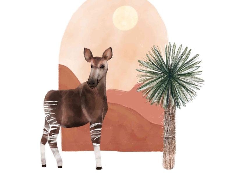 Okapi Love procreate watercolor minimalistic bohemian animals illustrated poster art illustration design