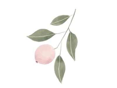 Lovely peach watercolor illustration design
