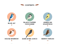 Birds of Brooklyn Field Guide