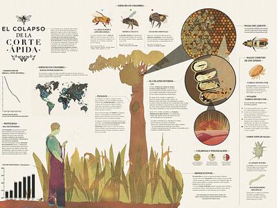 El colapso de la corte ápida   bee infographic bees infographic original art illustration art design surreal art illustration graphic design
