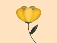 Blossom: The Arauz Collective yellow peony flower illustration flower digital art illustration graphic design