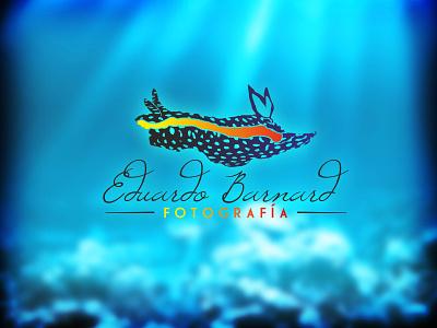 Eduardo Barnard Fotografia design branding logo ocean blue vector photography underwater