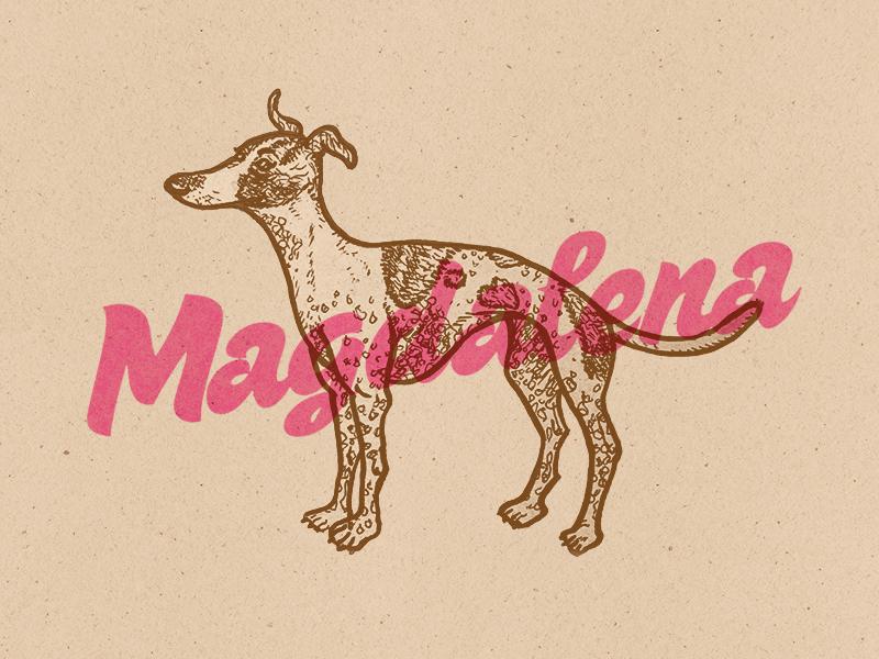 Magdalena doggo pupper greyhound typography ink illustration