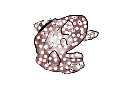 Svetolinol fish photoshop kids art adobe illustraion flounder fish ipad pro