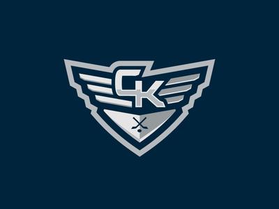 Steel Wings (Alternative sign) logos sports puck wings sticks sport logo hockey