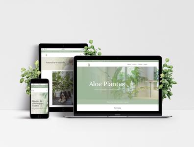 Aloe Plantes - Web Design barcelona branding plant shop plant plants responsive design responsive graphicdesigner graphicdesign webdesigner webdesign web