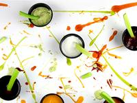 Pollock kitchen