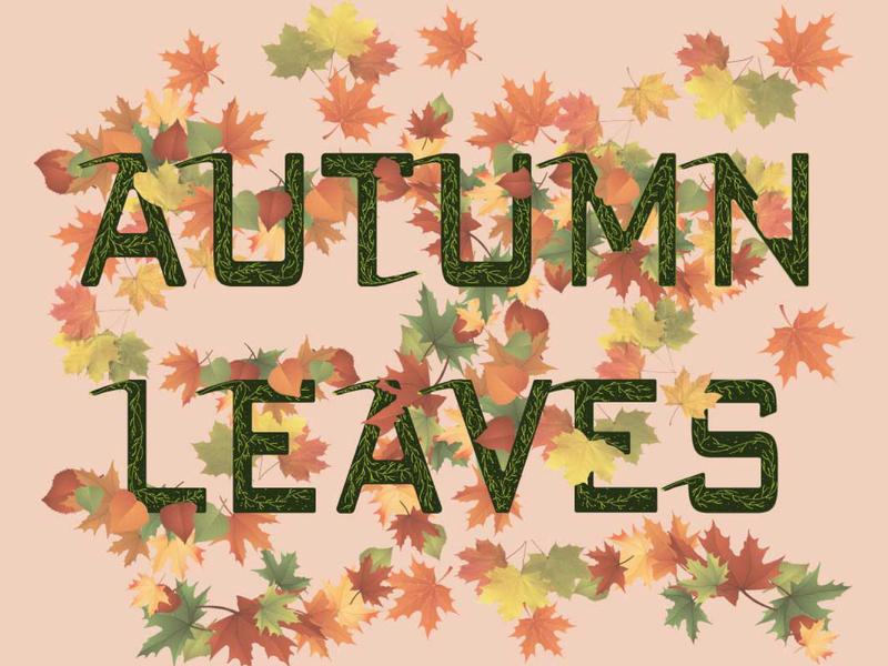 Autumn Leaves illustration typography