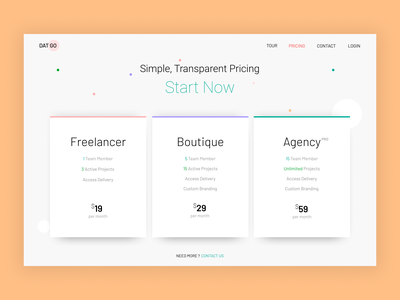 Pricing Section team designer uidesign ux design vector minimal typogaphy pricing page webdesign website uiux ui design ui