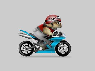 cureuil sur moto