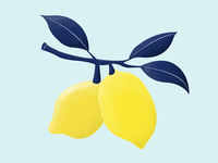 Lemons summer simple illustration lemonade texture vector art illustration lemons