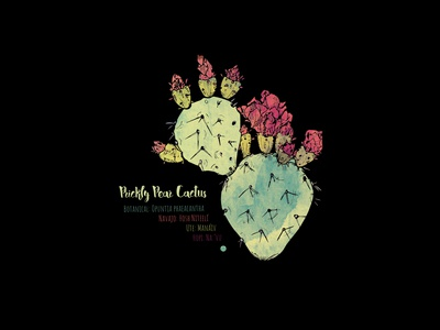Prickly Pear Dribbble