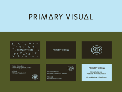 Primary Visual