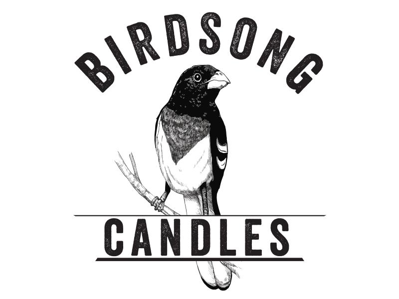 Birdsong Logo logo illustration photoshop bird