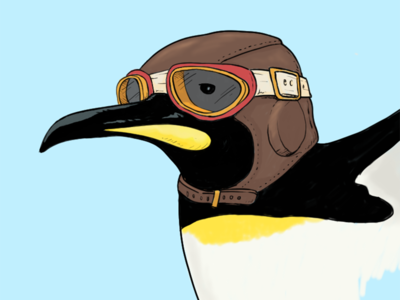 Aviator Penguin penguin illustration