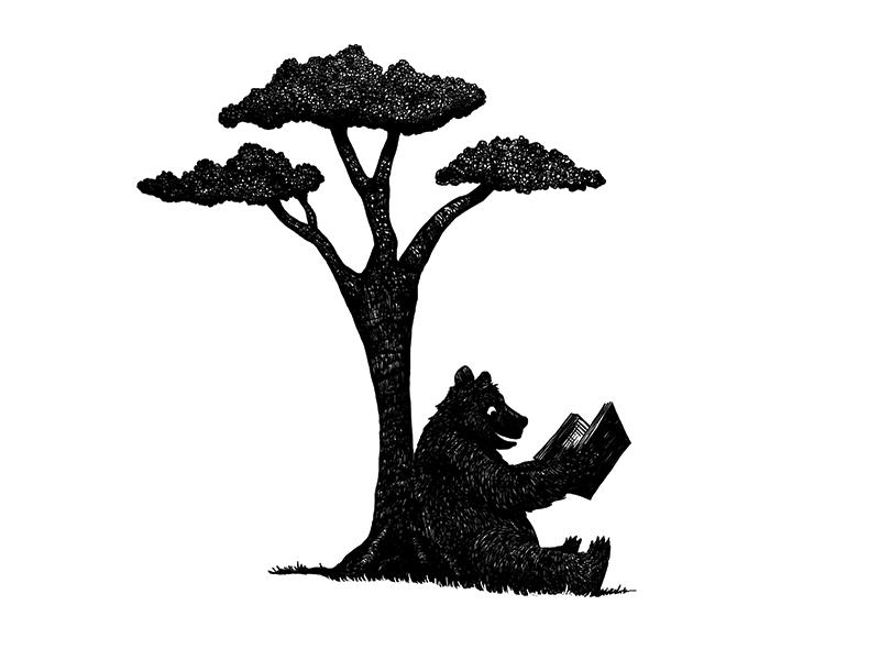Reading Bear edited bear reading illustration