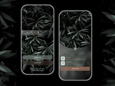 Daily UI 001 Sign Up website webdesign appdesign signup minimal ux ui mobile app figma web design dailyui