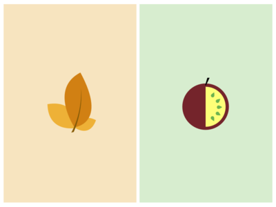 Steam flavours close-up steam flavour icons tobacco leaf passion fruit