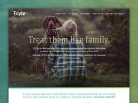 Tcyte.com Website