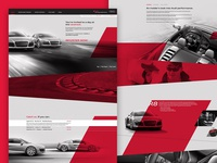 Audi Driving Exerience