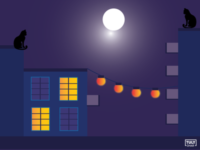 Full moon night illustration design adobe illustrator tuly dhar illustration night full moon full