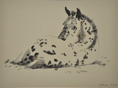 Spotted filly horse spots black and white watercolor