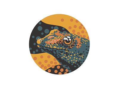 Gecko digital painting digital art procreate gecko illustration lizard