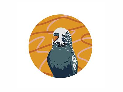 Yasha procreate digital illustration digital art budgie bird illustration