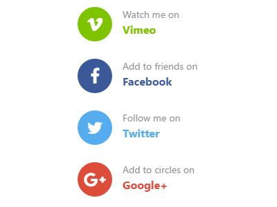 Widget: Getting social vimeo google twitter facebook widget network social