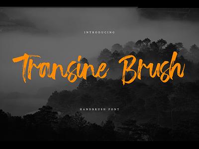 Transine Brush Font typeface handdrawn webfont logotype branding script brush transine