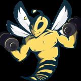 BeePower / Enzo