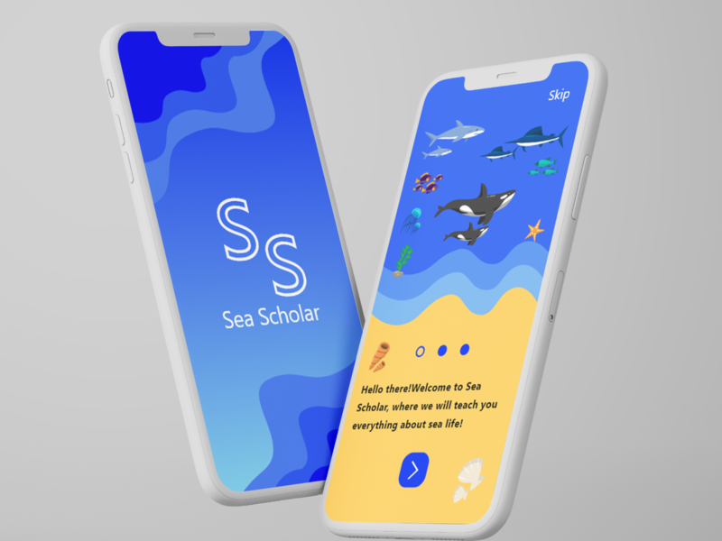 Sea Scholar ux app ui design