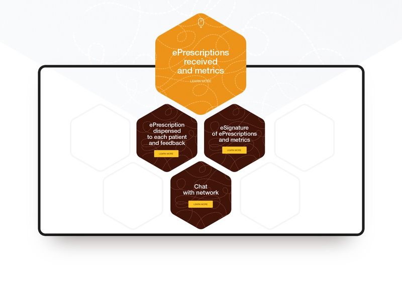 DrsBee website orange bee branding illustration vensko clean website web design