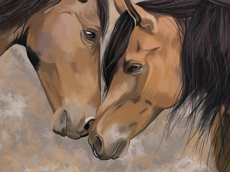 "Illustration on the theme ""Horses"" horses digital art art animal idea drawing illustration design"
