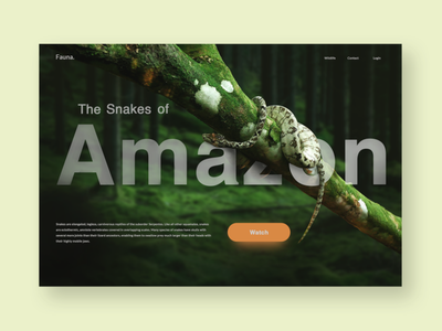 Landing page design - Fauna product design webdesign website web ui  ux interface amazon snakes forest wildlife ui