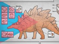 Dino Cuts: Stegosaurus