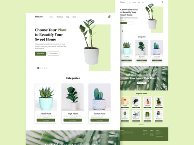 Planzee : UI/UX Website Design web design uiux ux ui