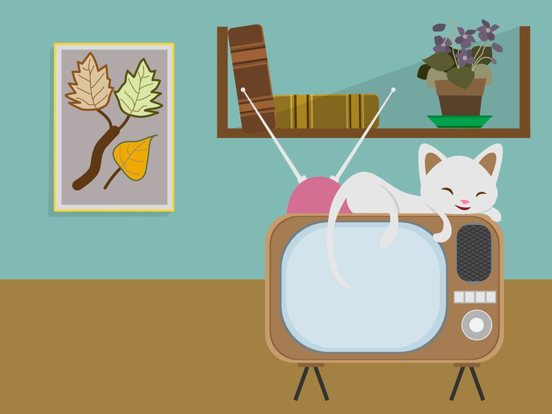 Kitty sleeps on tv sleep sleeping categories cats design illustration vector