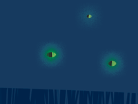 Porchlight Summer Tour Poster - Porchlight Fireflies Detail