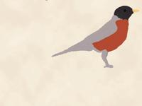 Poster Detail: Robin